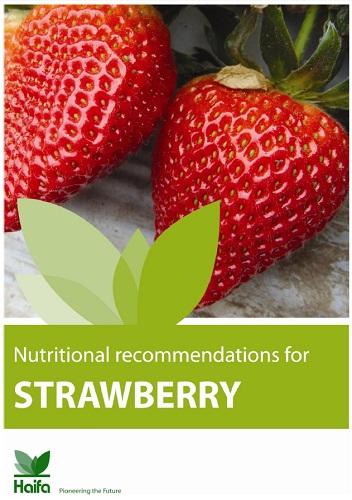 Strawberry crop guide