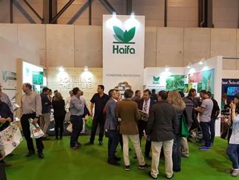 Haifa Iberia participó en FRUIT ATTRACTION 2017, el gran evento del sector hortofrutícola internacional.